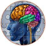 Illustration du cerveau humain et de la mémoire