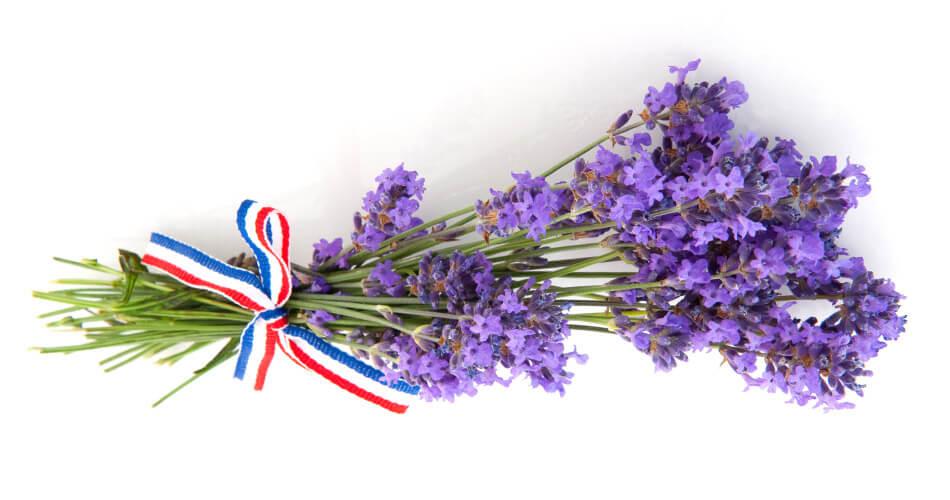 Bouquet de lavande avec ruban tricolore
