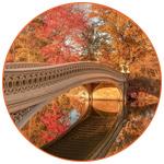 Bow Bridge à Central Park (USA)