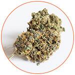 Boulette de cannabis