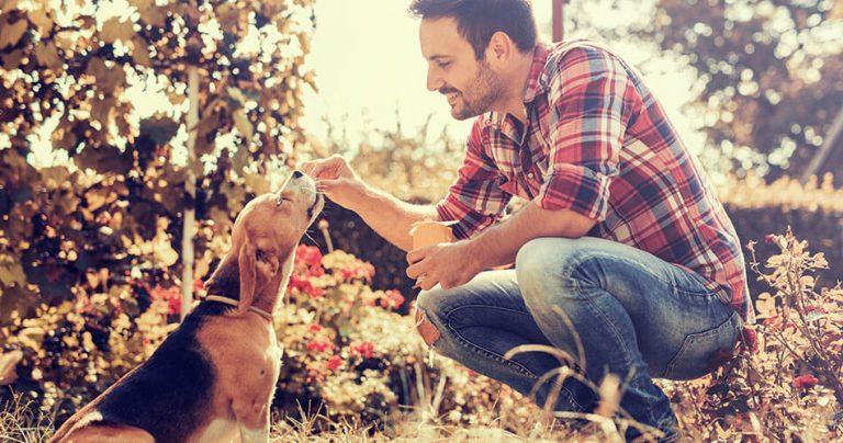 Un jeune homme donne à manger à son chien à l'extérieur