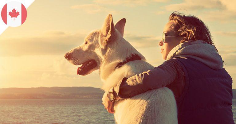 Maitresse et son chien au bord de l'océan profitant d'un coucher de soleil