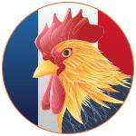 Illustration d'un coq sur devant un drapeau français
