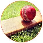 Equipement de cricket sur le gazon australien