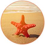 Une étoile de mer rouge sur le sable avec un coucher de soleil