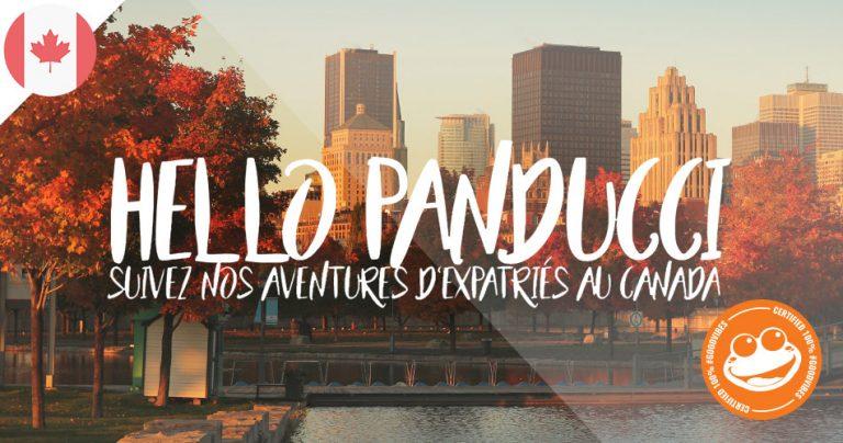 Bannière du Blog : Hello Panducci / French Radar