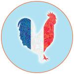 Illustration d'un coq aux couleurs de la France