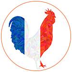 Illustration d'un coq tricolore aux couleurs de la france