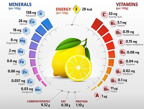Infographie de la composition du citron