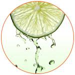Rondelle de citron vert avec son jus