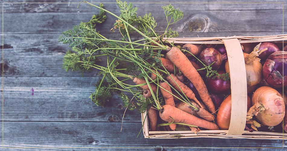 Panier de carottes et de légumes divers