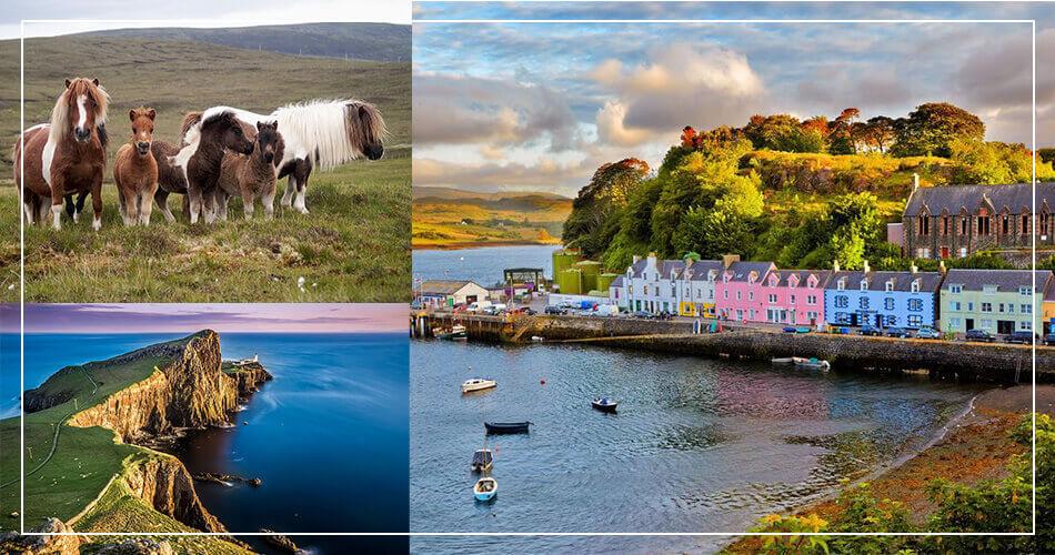 Paysages d'Ecosse : animaux, village, mer, highlands