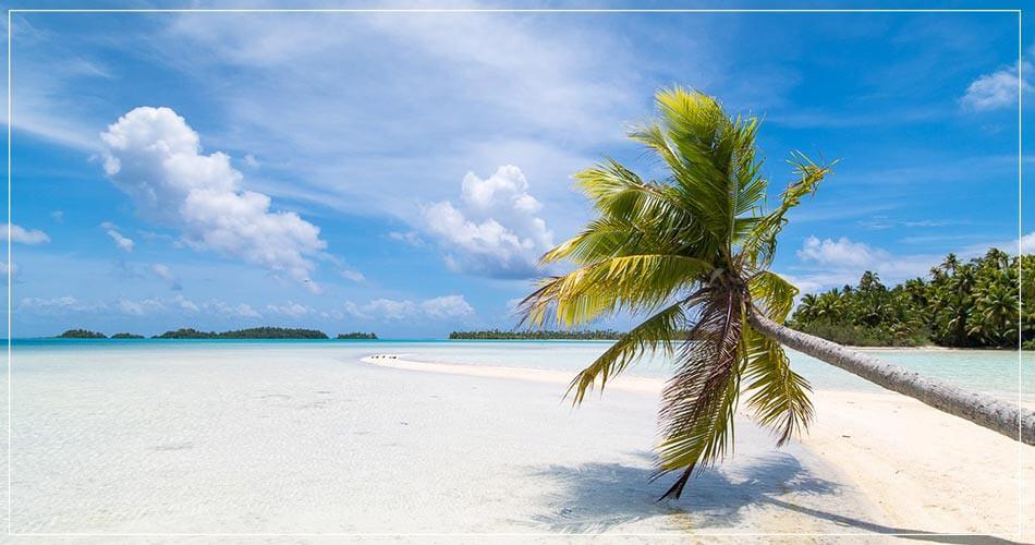 Paysage tahitien avec palmiers, sable blanc et ciel bleu
