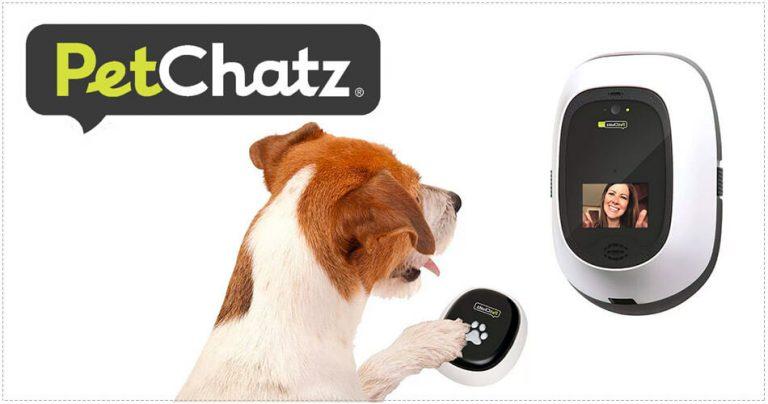 Présentation de PetChatz, caméra audio / vidéo pour animaux