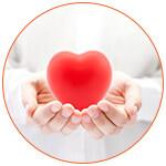 Présentation d'un coeur rouge dans le creux de 2 mains