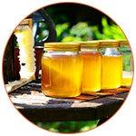 4 pots de miel sur une table dans un jardin