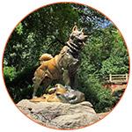 La statue du chien Balto à Central Parc (New York, USA)