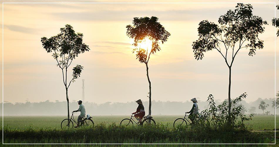 Paysage de Thaïlande avec des cyclistes traversant un champ
