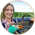 Jeune femme souriante aide agricole dans le cadre du wwoofing