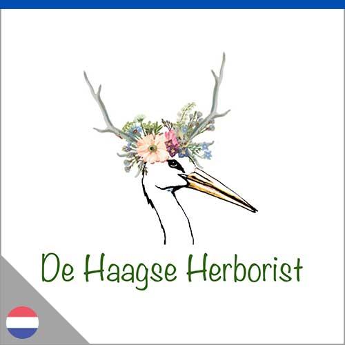 herboriste aux Pays-Bas
